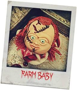 (Photo Credit: Farm Baby)
